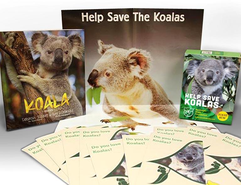 Save the koala donation box