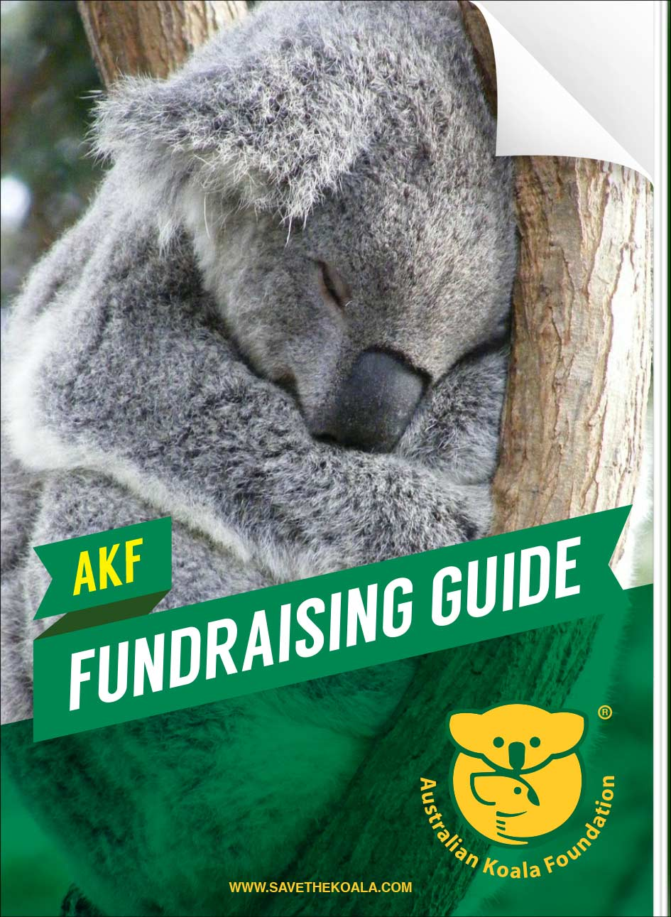 AKF fundraising guide
