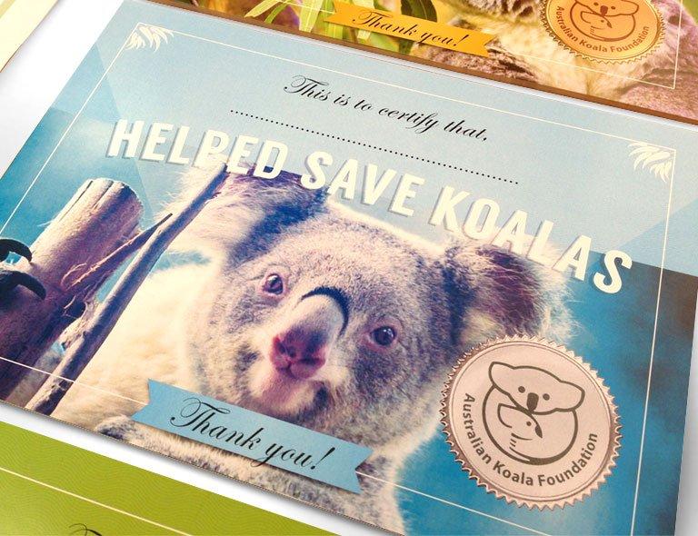 Save the koala