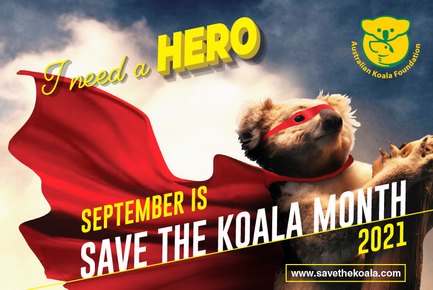 Save the Koala Month 2020